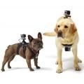GoPro nosač za pse - ADOGM-001